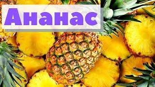 Как это сделано | Ананас |Pineapple