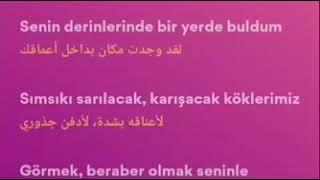 Ufuk Beydemir   Ay Tenli Kadin Sözleri (lyrics, مترجمة)