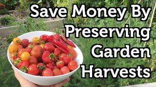 Preserve Garden Fruit And Vegetables 4 Easy Methods