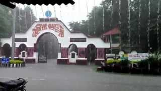 preview picture of video 'rains and the beauty of Tezpur University Main Gate'