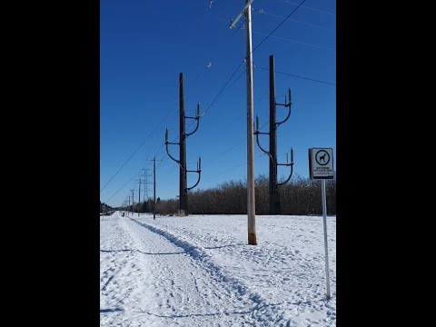 Concern over New High Voltage Tower