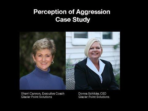 Case Study: The Perception of Aggression
