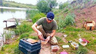 Как правильно ловить карпа на бойлы летом