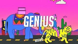 LSD - Genius Ft. Sia, Diplo, Labrinth (DCast Remix)