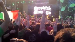 Dropkick Murphys - The Wild Rover - Live 2014 Budapest,  Hungary.