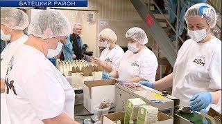 В деревне Мойка Батецкого района сегодня презентовали чайную фабрику