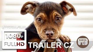 Psí domov (2019) CZ dabing HD trailer