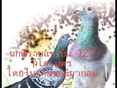 ประเทศไทยและปรสิต