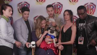 Doug the Pug Interviews SUPERGIRL | Comic-Con 2017