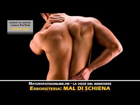 Provoca infiammazione dellarticolazione del ginocchio