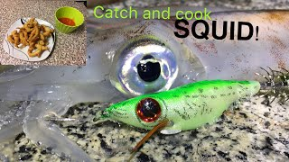 SQUID, Catch , Clean , Cook ! Fishing for Squid !