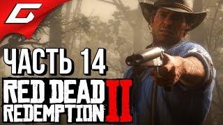 RED DEAD REDEMPTION 2 ➤ Прохождение #14 ➤ КОНИНА НА УЖИН