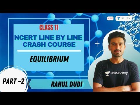 Equilibrium L - 2 | NCERT Line by Line Crash Course | Class 11th | Rahul Dudi