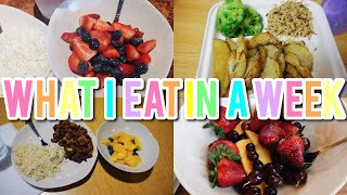 What I Eat In A Week   College Dining Halls As A Vegan!