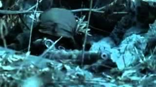 Megadeth - Sudden Death [Music Video]