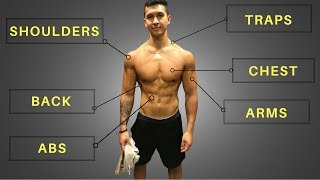 My FULL Training Routine (Workouts, Diet, & Cardio!)