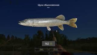 Русская рыбалка 4 - озеро Старый Острог - Щука за островом
