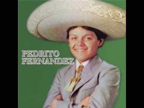 Pedrito Fernández - ALLA EN EL RANCHO GRANDE  [Rosa Maria, 1982]
