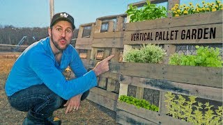 Building our Vertical Pallet Garden