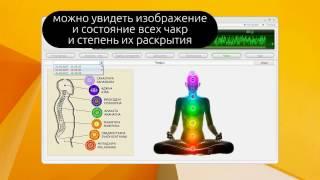 WEB Wellness как работать с LifeExpert