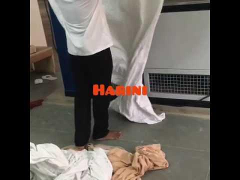 Laundry Steam Flatwork Ironer