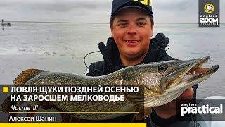 Рыбалка с шаниным новое