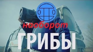 ПЕСНЯ НАОБОРОТ#1 - ГРИБЫ - ТАЕТ ЛЁД.(ImMoRTaL)