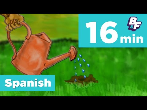 Learn Spanish math and nature vocabulary with BASHO & FRIENDS - Compilation