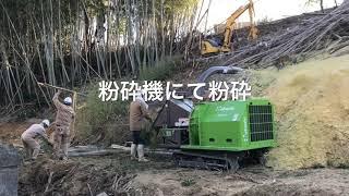 竹林 伐採 粉砕 巨木 伐採 粉砕機
