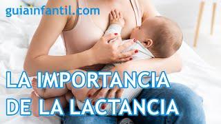 La importancia de la lactancia materna - TV para Padres