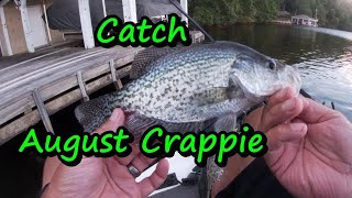 How To Catch Crappie In August,tips Lures And Locations, Summer Crappie Fishing . Panoptix Crappie