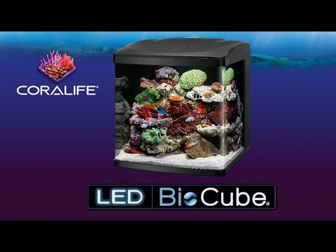 Coralife LED Bio Cube 32 / 16 gallon all in one aquariums for saltwater or freshwater