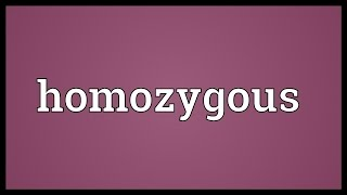Homozygous Meaning