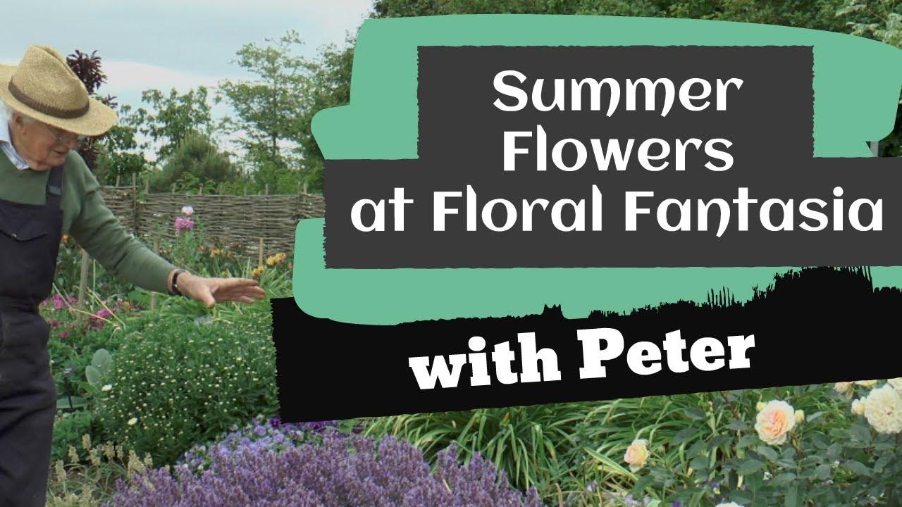 Summer Flowers at Floral Fantasia