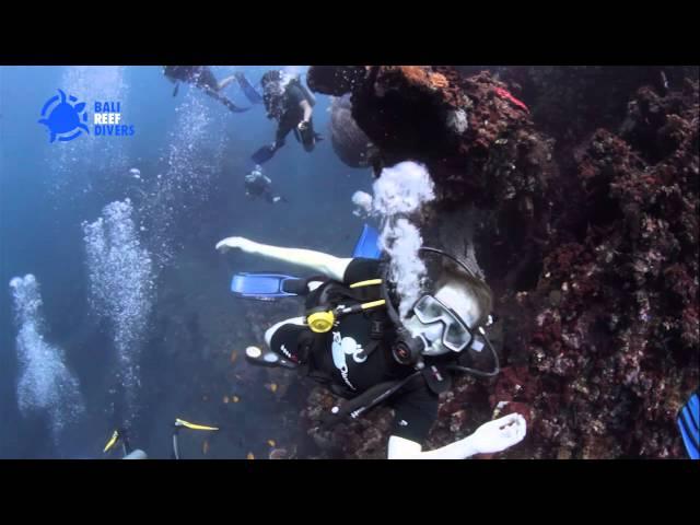 Scuba diving in Tulamben, Bali with Bali Reef Divers - Puri Wirata Resort