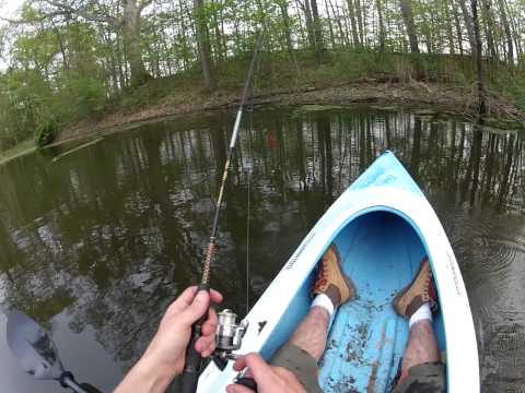 GoPro Pond Kayak Fishing,  Two Largemouth Bass