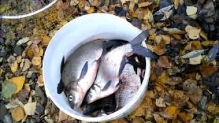 Рыболовные места на волге калязин 2020