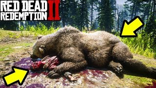 What Happens if You CAPTURE a Bear in Red Dead Redemption 2?