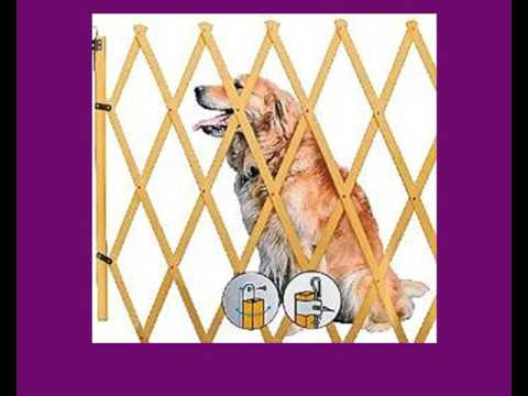 Hundeabsperrungen - denn Hunde dürfen nicht überall hin