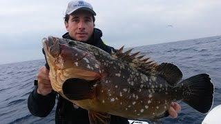 Trabucco TV – Pesca in mare – Cernie a bolentino con Saverio Rosa