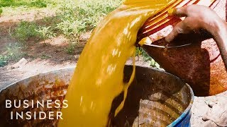 Why Palm Oil Is So Cheap