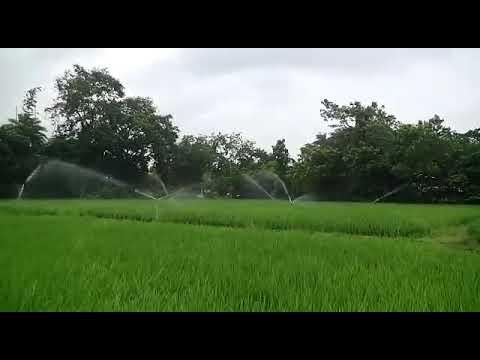 Rain Gun for Irrigation