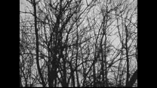 Video SAGE - The Mask Of Melpomené (singl 2014)