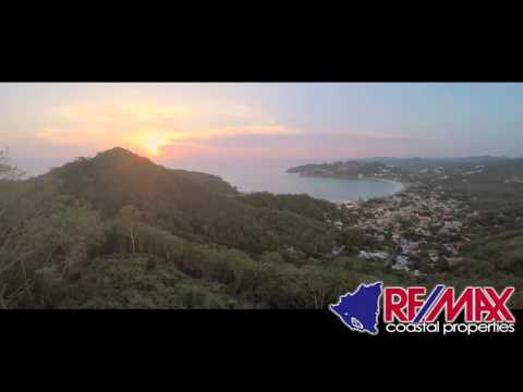 Paradise Bay Eagle Eye Views