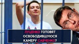 Луценко готовят освободившуюся камеру Савченко? - НеДобрый Вечер