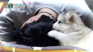 [미공개] 심쿵유발자 최뚜이 폭풍성장캠! 뚜이의 폭풍 성장기 대공개! | Kholo.pk