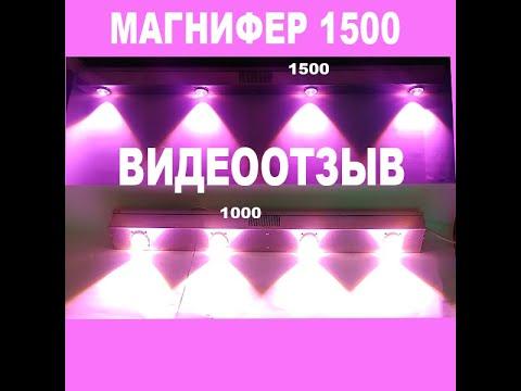 Магнифер 1500 отзывы клиентов
