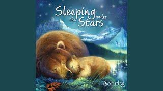 The Great Bear Softly Sleeps