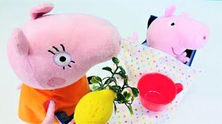 Video mit Peppa Wutz auf Deutsch. Schorsch ist krank. Spielzeug Video für Kinder.