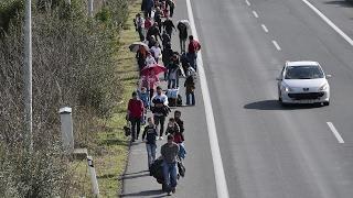 Миграционный «план Б» разрабатывают балканские страны (новости)